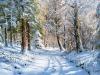 1_Zima_w_lesie_yapfiles.ru_